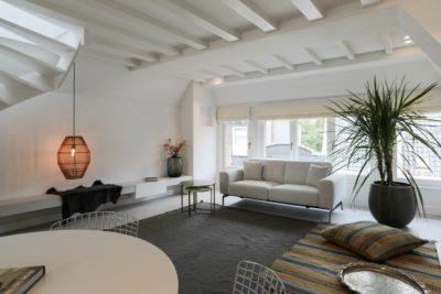 Witte woonkamer met palmboom en witte vouwgordijnen - DSTRCT