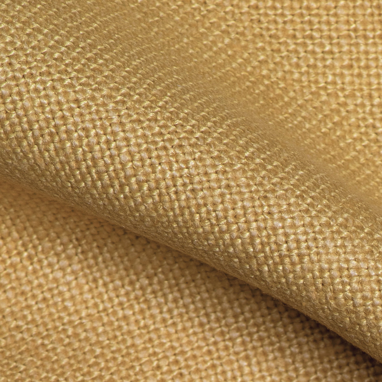 Close-up van de Kensington Gold