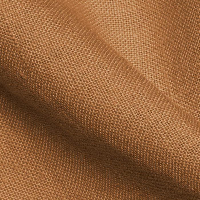 Close-up van Provence Mustard