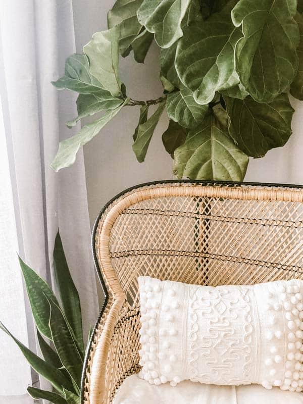 Bohemian style rotan stoel met een groene plant